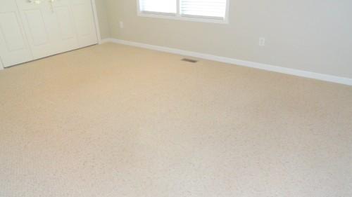 clean carpet (after Heaven's Best Carpet Cleaning)